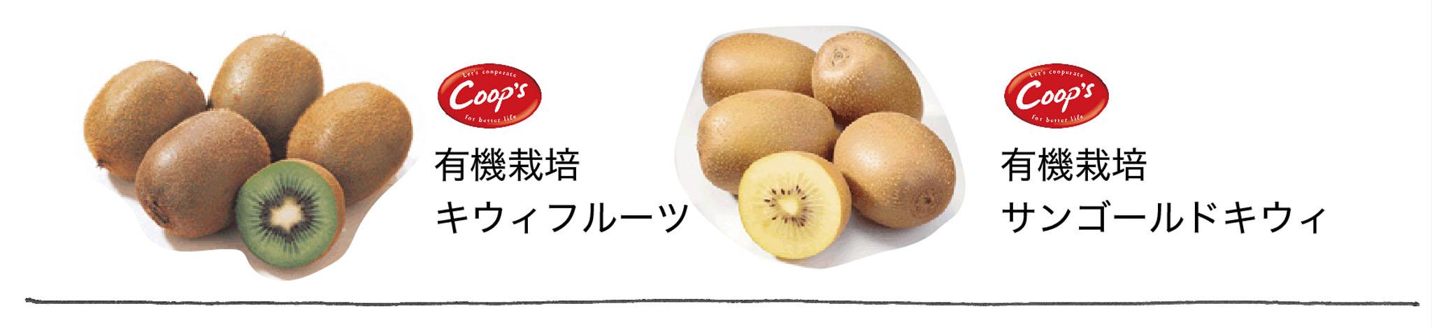 natuoyasu_b.jpg